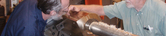 Acme Screw Repair - Trapezoidal Lead Screw Reconditioning